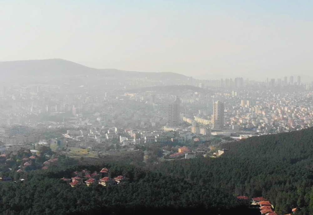 Конкурс Дом на дереве в парке, Турция 2021