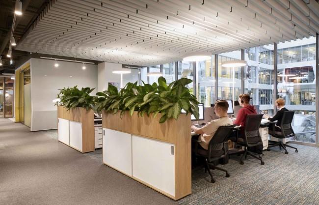 рабочее место с растениями