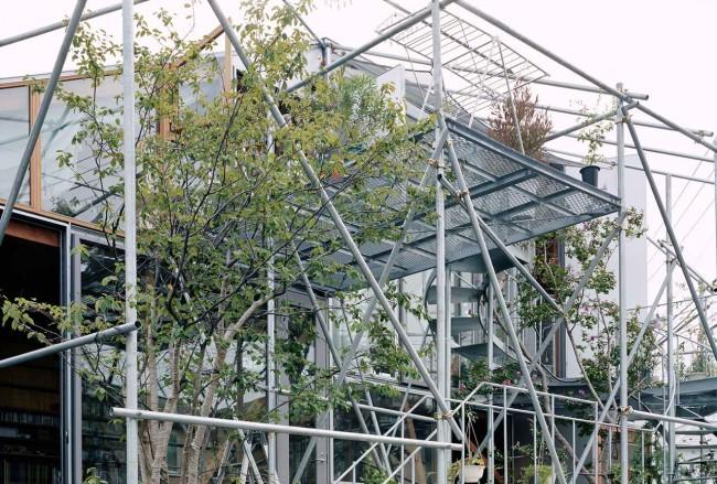 фасад из труб  с деревьями