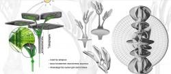 искусственные деревья - фотобиореакторы