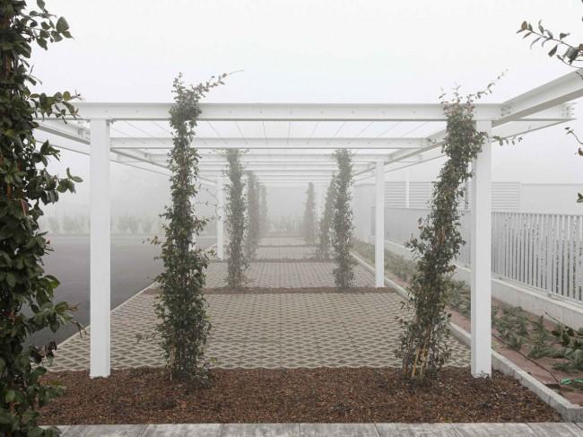 галерея с вьющимися деревьями