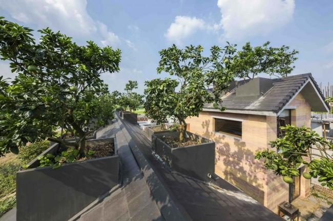 сад на скатной крыше земляного дома