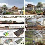 Архитектура Владивостока в контексте устойчивости
