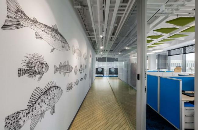 коридор с графикой (рыбы)