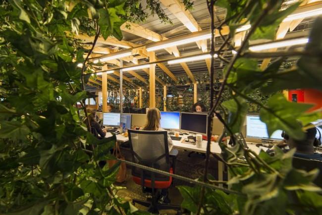 зелёный домик в офисе