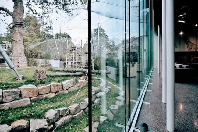 прозрачные навесы-тенты в зоопарке