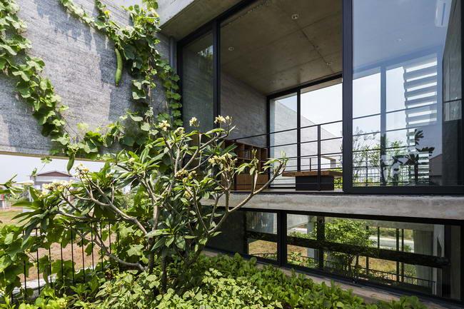 дерево в интерьере дома Binh House